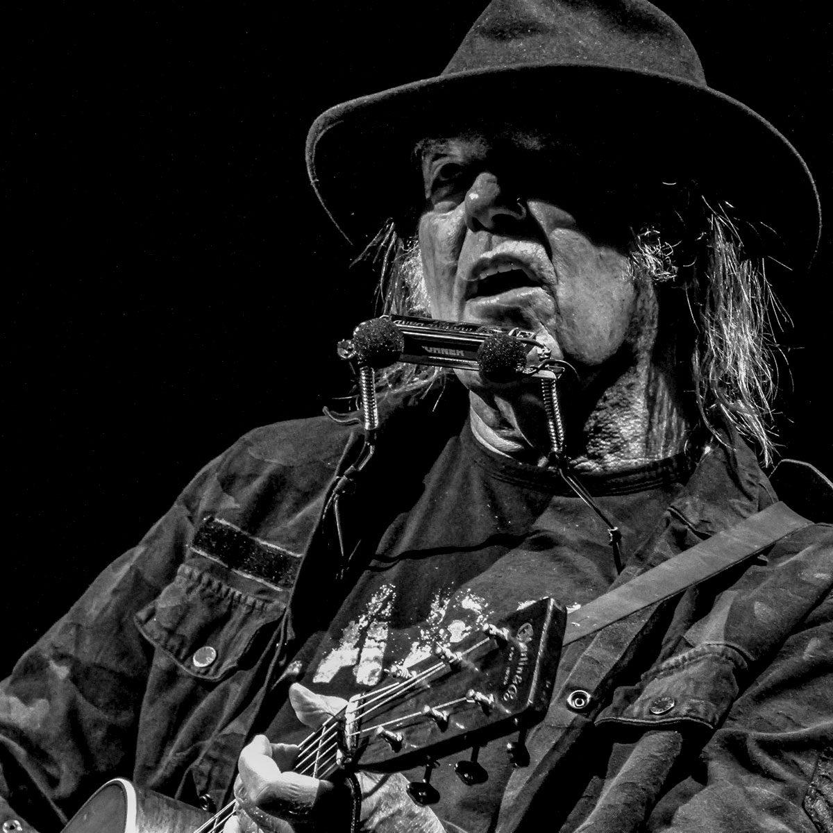 Neil-Young_foto-Giorgio-Baratto-©