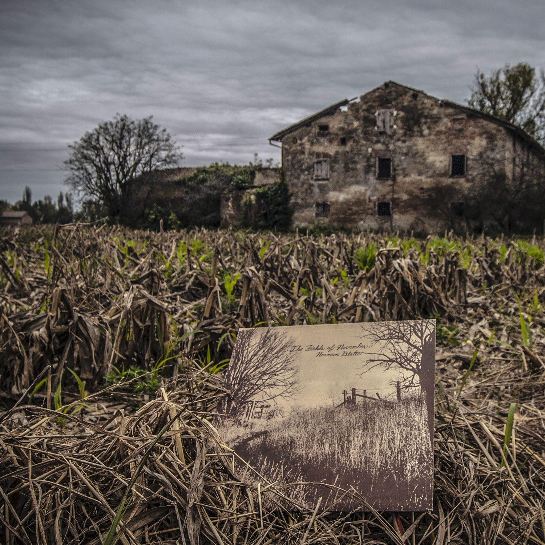 Norman Blake: The Fields Of November